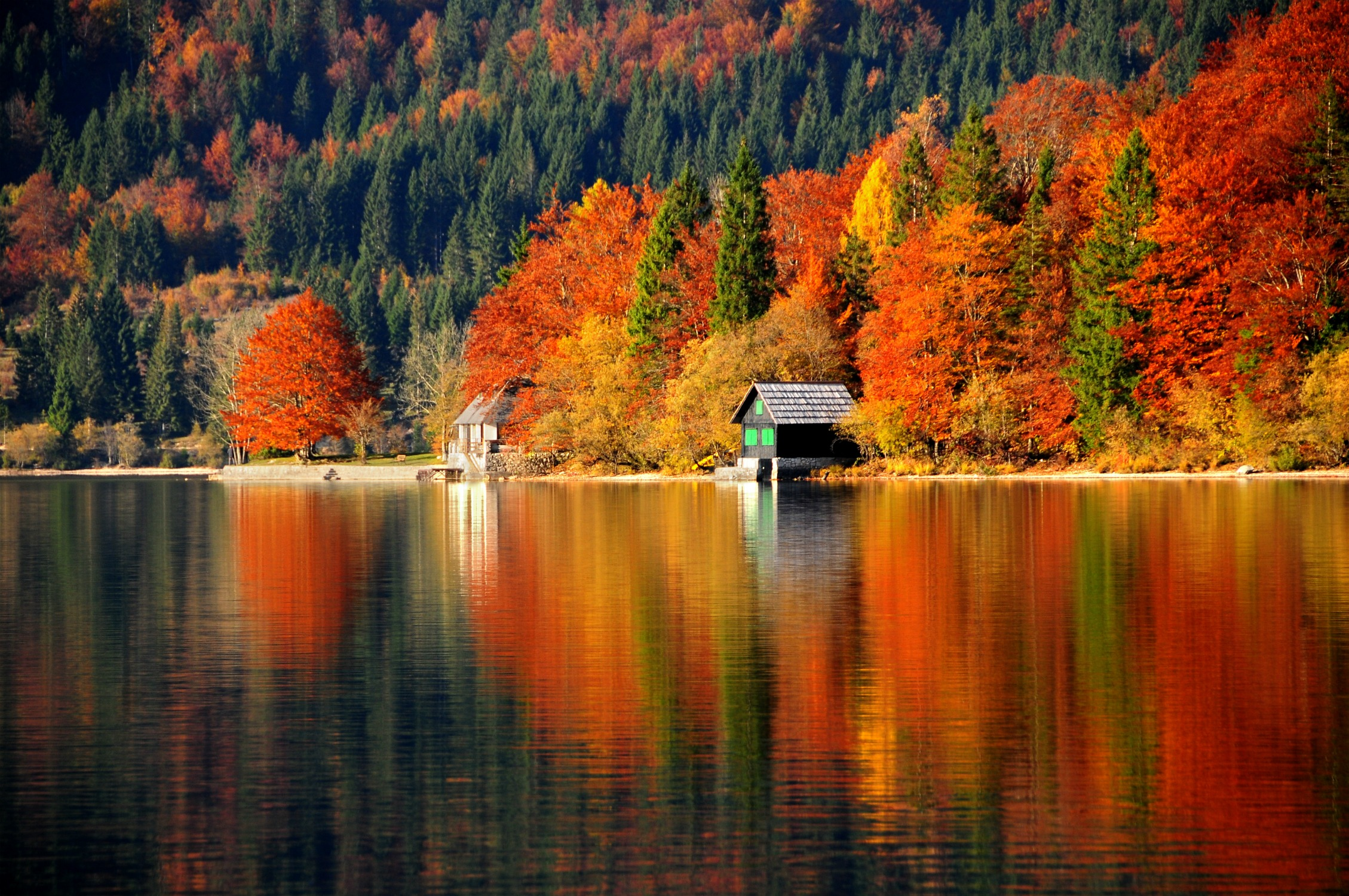 осенний лес у озера  № 254807 загрузить