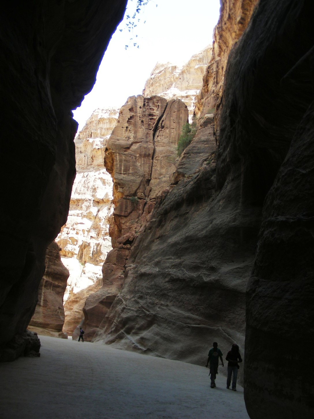 Nature's way of highlighting the essence of beauty in Petra, Jordan