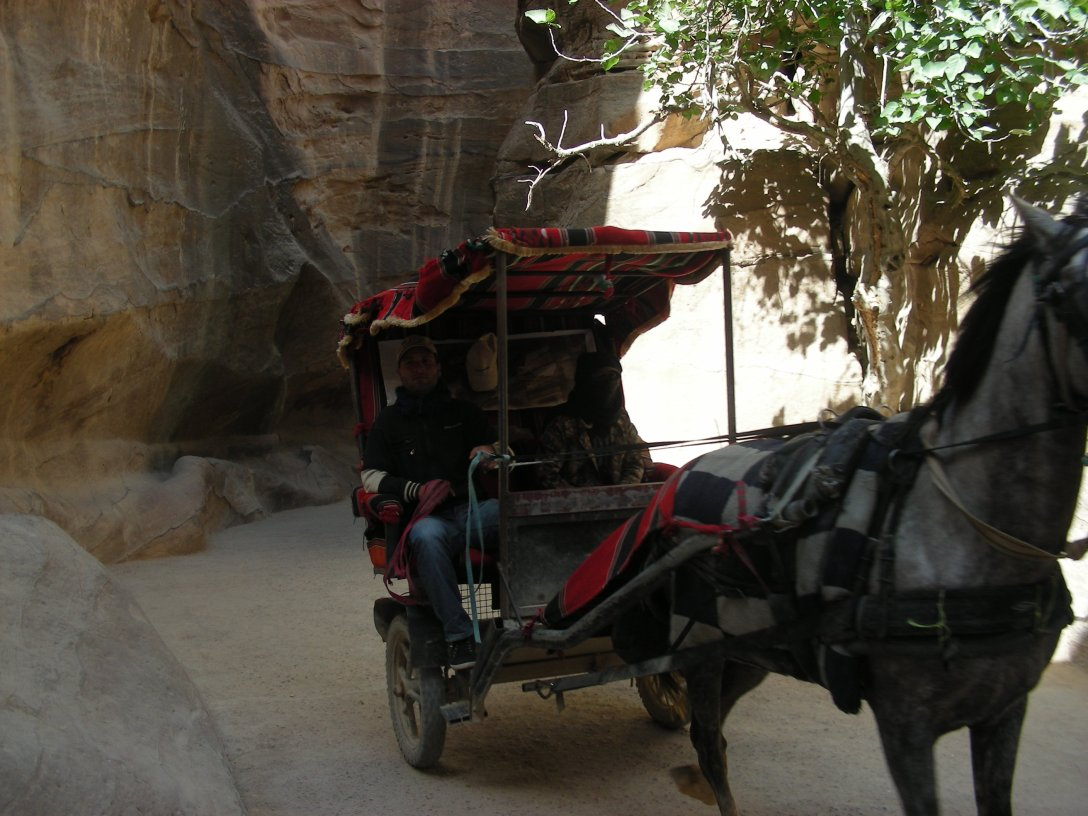 The horse-drawn carriages in petra are very colourful and striking