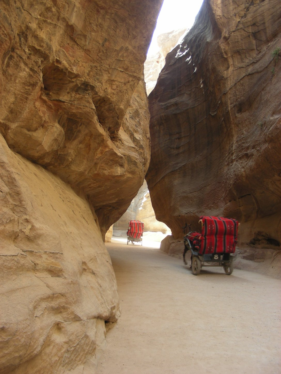 The carriages at Petra are in great demand by visitors