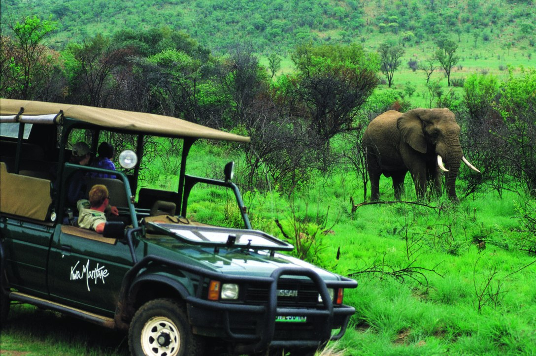 Elephant viewing at Kwa Maritane Bush Lodge